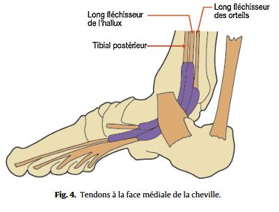 pas cher à vendre magasin meilleurs vendeurs acheter authentique Guide pour un diagnostic d'une douleur du pied chez l'adulte ...