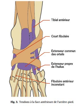 douleur latérale pied